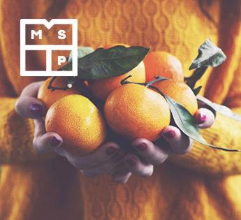 week1-msp-orange-tree